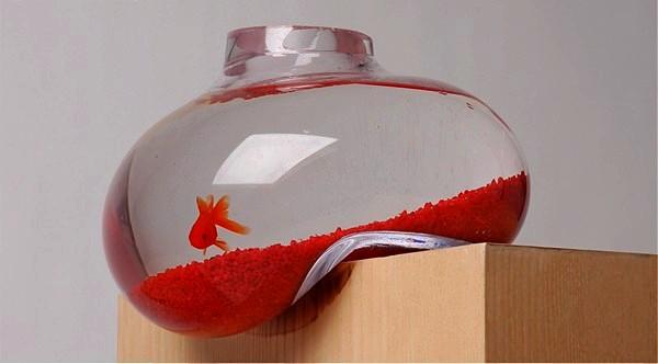 Bubble Tank, *сползающий* со стола аквариум с рыбками